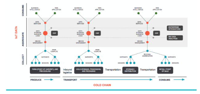 Holistic Cold-Chain Management